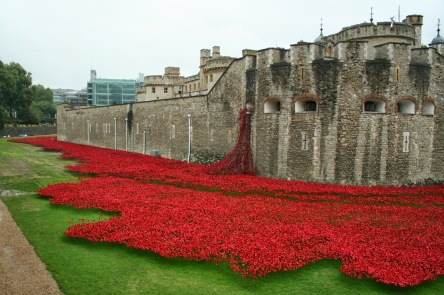 Tower_of_London_poppies_0581